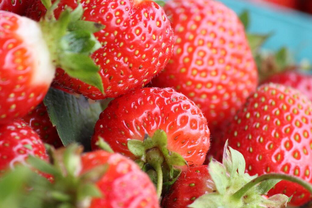 strawberries in bucket